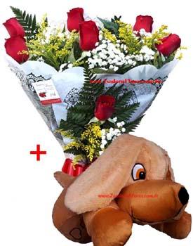 cod (5545) Cachorro + Buquê de Rosas