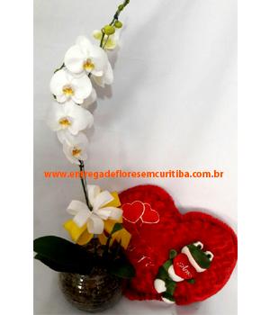 Cód: 5692 Orquídea + Coração Sapinho