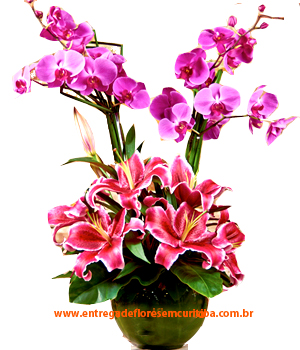 Cód: 5110  OrquíGria Luxo